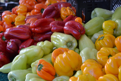 multi-peppers_6-29.jpg