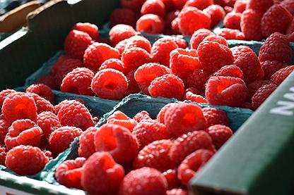 raspberries_5-19.jpg