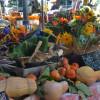 Thumbnail image for November at the Santa Barbara Farmers Market