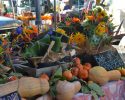 Thumbnail image for November at the Santa Barbara Farmers Market