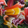 Thumbnail image for Spring at the Santa Barbara Farmers Market