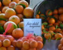 Thumbnail image for April at the Hollywood Farmers Market and Some Tasty Spring Links