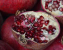 Thumbnail image for Early-Fall at the Santa Barbara Farmers Market